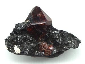rock561