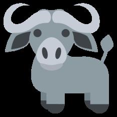 1501-water-buffalo