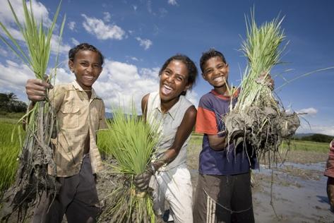 Timor-Leste profile image