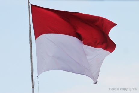 flag-857988